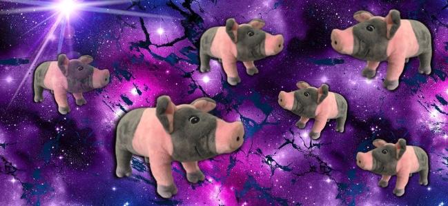 Schweine im Weltall